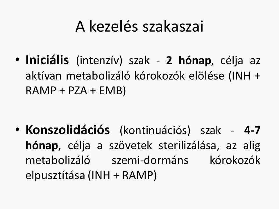 A kezelés szakaszai Iniciális (intenzív) szak - 2 hónap, célja az aktívan metabolizáló kórokozók elölése (INH + RAMP + PZA + EMB) Konszolidációs (kontinuációs) szak - 4-7 hónap, célja a szövetek sterilizálása, az alig metabolizáló szemi-dormáns kórokozók elpusztítása (INH + RAMP)