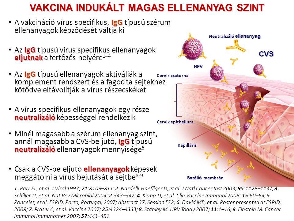HPV Cervix csatorna Neutralizáló ellenanyag Kapilláris Bazál is membrán Cervix epithelium 1. Parr EL, et al. J Virol 1997; 71:8109–811; 2. Nardelli-Ha