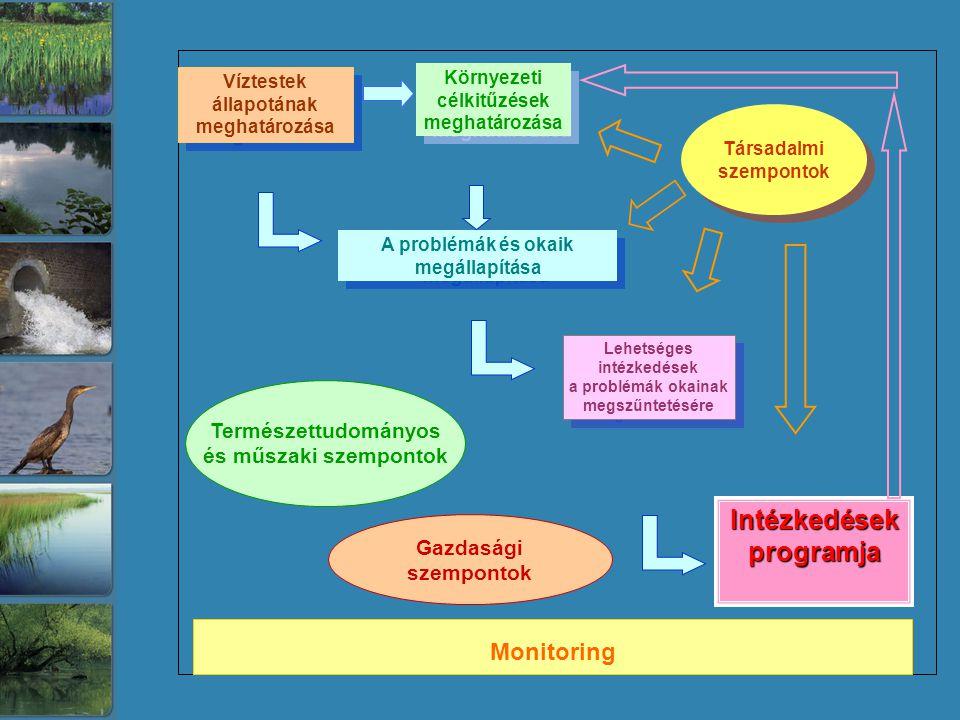Víztestek állapotának meghatározása Víztestek állapotának meghatározása Környezeti célkitűzések meghatározása Környezeti célkitűzések meghatározása A