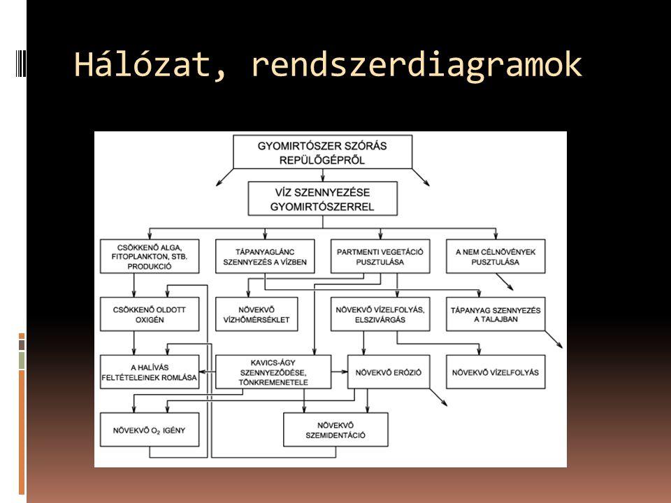 Hálózat, rendszerdiagramok