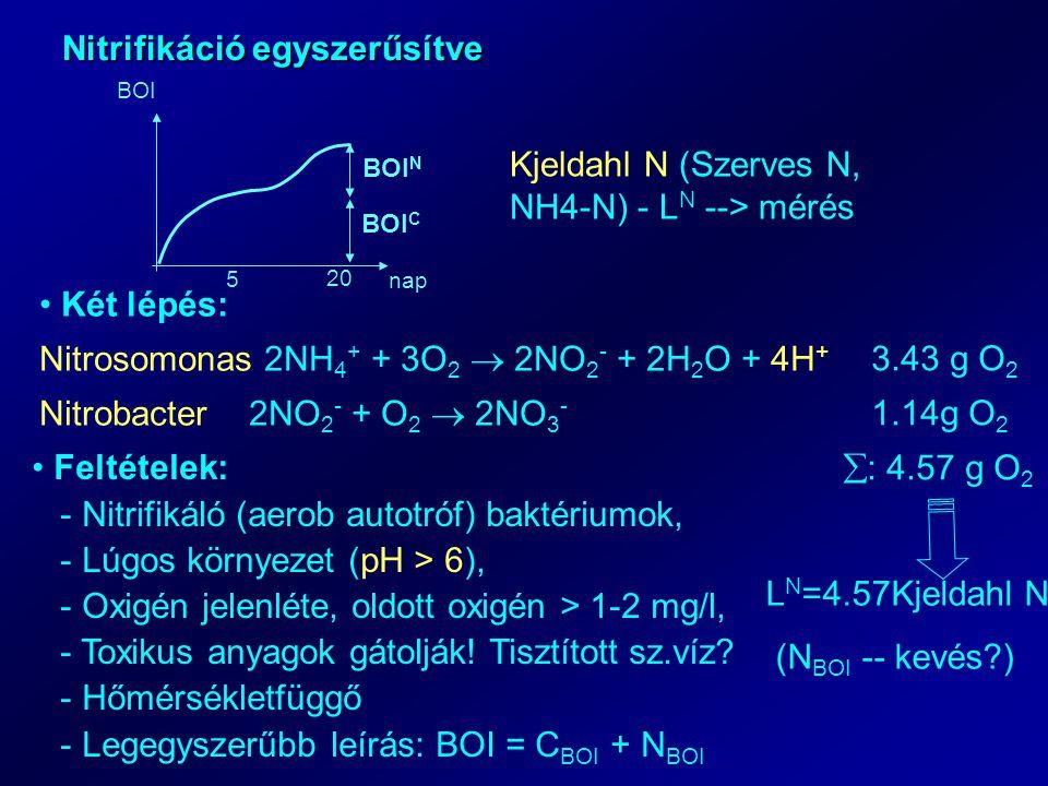 Nitrifikáció egyszerűsítve 5 20 nap BOI BOI C BOI N Kjeldahl N (Szerves N, NH4-N) - L N --> mérés Két lépés: Nitrosomonas 2NH 4 + + 3O 2  2NO 2 - + 2H 2 O + 4H + Nitrobacter2NO 2 - + O 2  2NO 3 - 3.43 g O 2 1.14g O 2  : 4.57 g O 2 L N =4.57Kjeldahl N (N BOI -- kevés?) Feltételek: - Nitrifikáló (aerob autotróf) baktériumok, - Lúgos környezet (pH > 6), - Oxigén jelenléte, oldott oxigén > 1-2 mg/l, - Toxikus anyagok gátolják.
