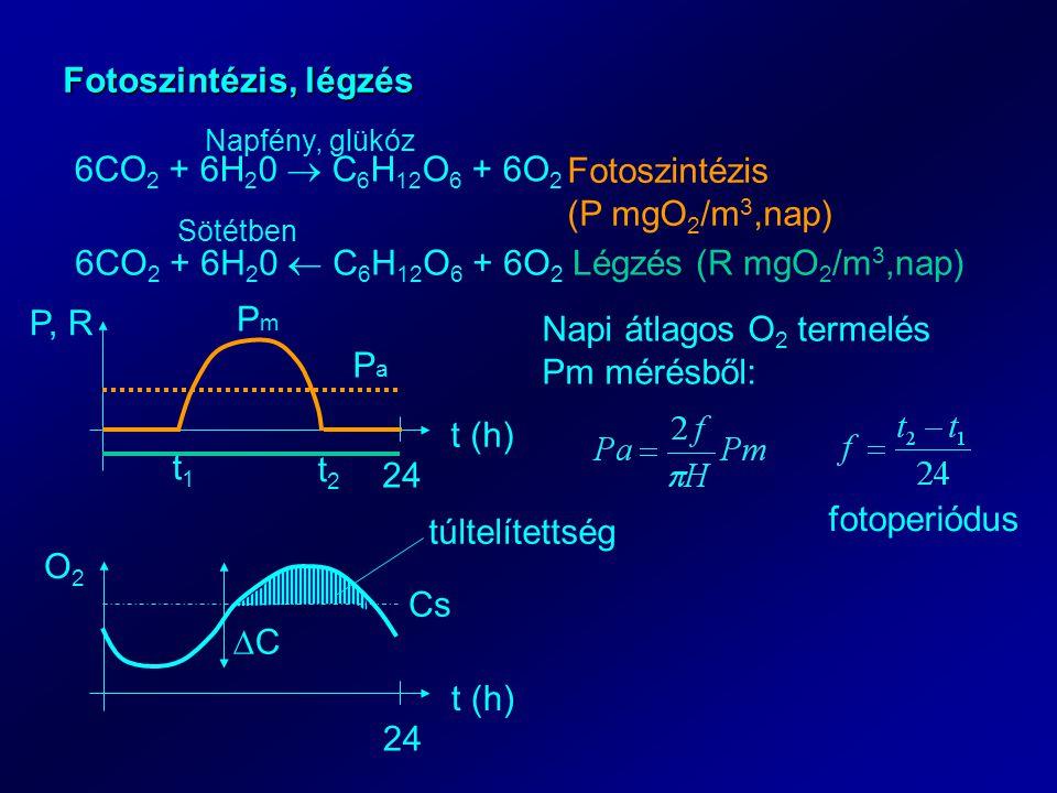 Fotoszintézis, légzés 6CO 2 + 6H 2 0  C 6 H 12 O 6 + 6O 2 Napfény, glükóz Fotoszintézis (P mgO 2 /m 3,nap) 6CO 2 + 6H 2 0  C 6 H 12 O 6 + 6O 2 Légzés (R mgO 2 /m 3,nap) Sötétben t (h) P, R 24 t (h) O2O2 24 Cs túltelítettség CC t1t1 t2t2 PaPa PmPm Napi átlagos O 2 termelés Pm mérésből: fotoperiódus
