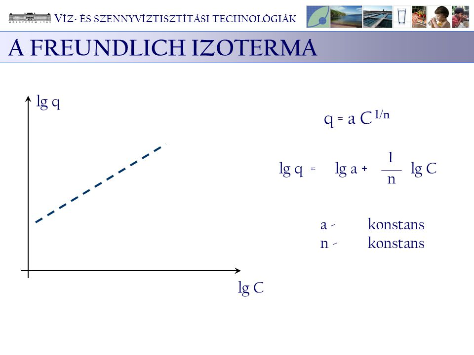 A FREUNDLICH IZOTERMA a - konstans n - konstans lg q lg C q = a C 1/n = 1 n lg qlg a +lg C V ÍZ- ÉS SZENNYVÍZTISZTÍTÁSI TECHNOLÓGIÁK