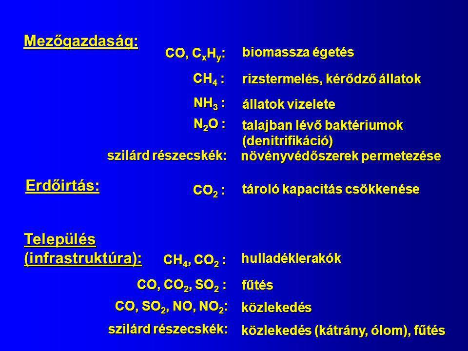 GázAntropogénTermészetes Antropogén % CO 2 -C 7 000 100 000 7 CO-C 505 505 75 75 87 87 CH 4 -C 270 270 120 120 69 69 SO 2 -S 70 70 35 35 67 67 NO-N 20 20 10 10 67 67 N 2 O-N 1 10 10 9 NH 3 -N 20 20 50 50 VOC 75 75 750 750 9 Freonok 1 0100 Gázkibocsátás [Tg/év]