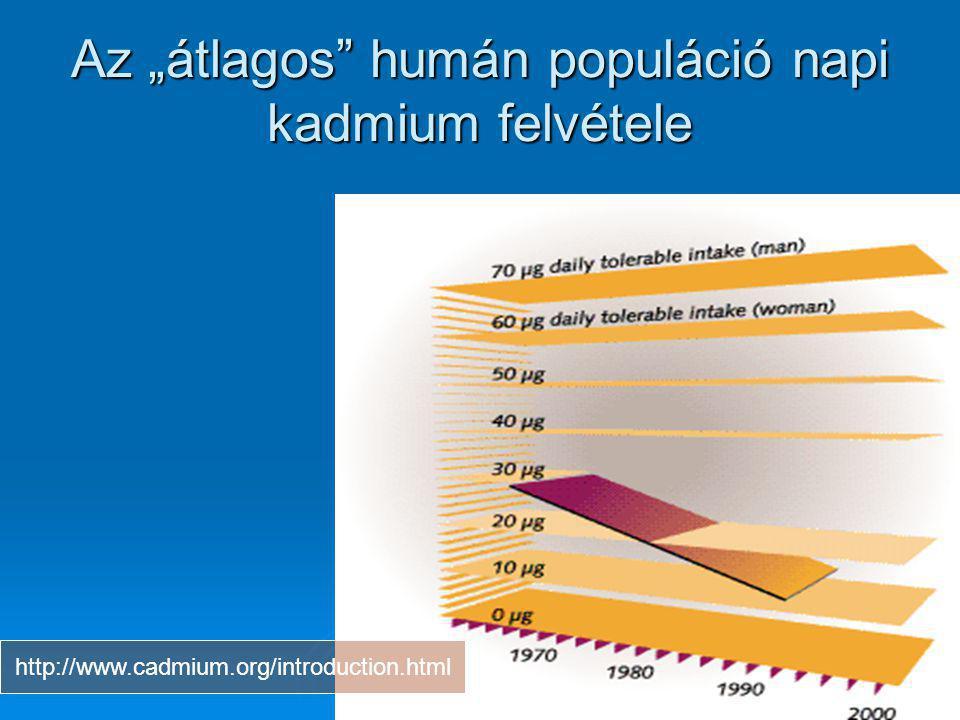 """Az """"átlagos"""" humán populáció napi kadmium felvétele http://www.cadmium.org/introduction.html"""