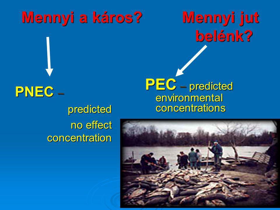 Mennyi a káros? Mennyi jut belénk? PNEC – predicted no effect concentration PEC – predicted environmental concentrations