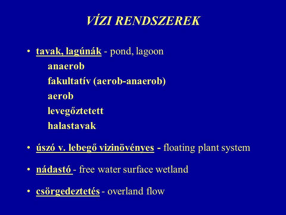 VÍZI RENDSZEREK tavak, lagúnák - pond, lagoon anaerob fakultatív (aerob-anaerob) aerob levegőztetett halastavak úszó v. lebegő vizinövényes - floating
