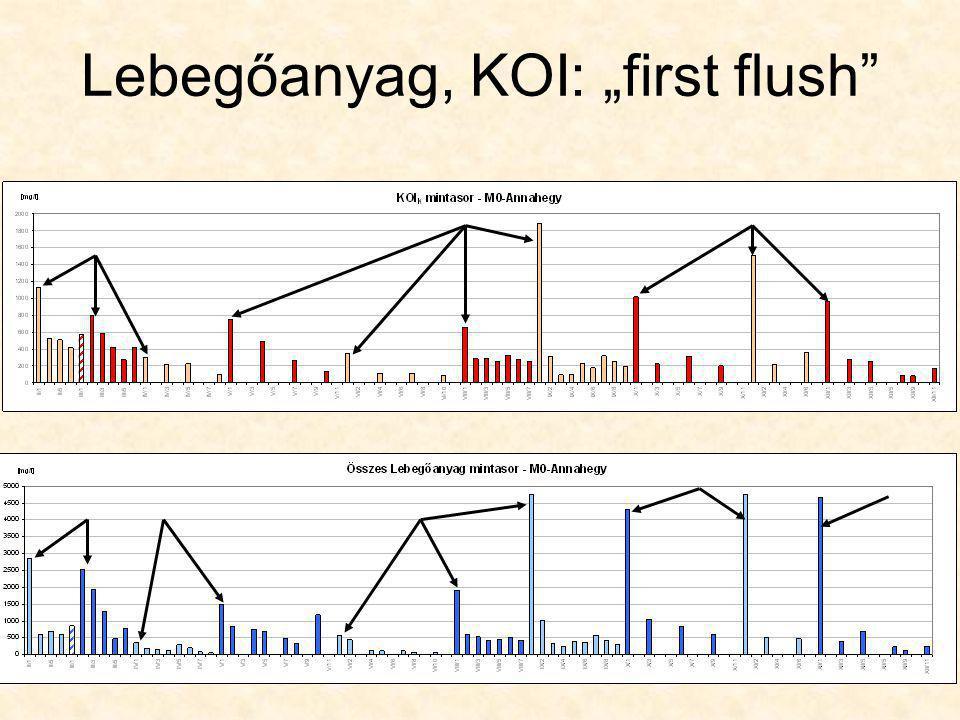 "Lebegőanyag, KOI: ""first flush"""