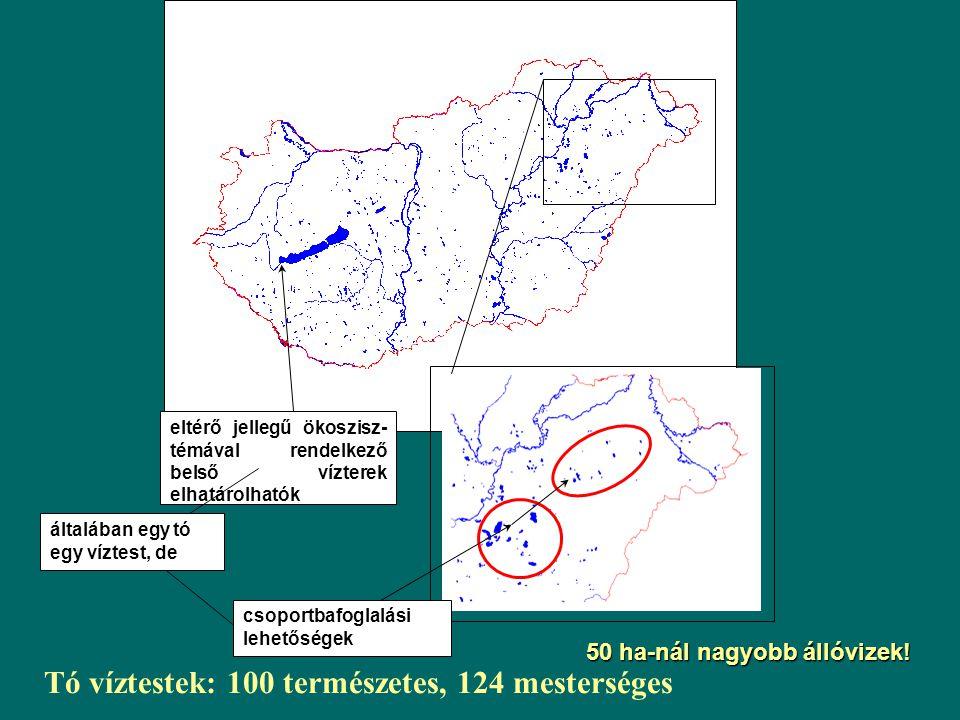 MESTERSÉGES VÍZTESTEK Mesterséges vízfolyások Mesterséges víztestek Természetes víztestek Kezelésük szempontjából hasonlóak az erősen módosított víztestekhez