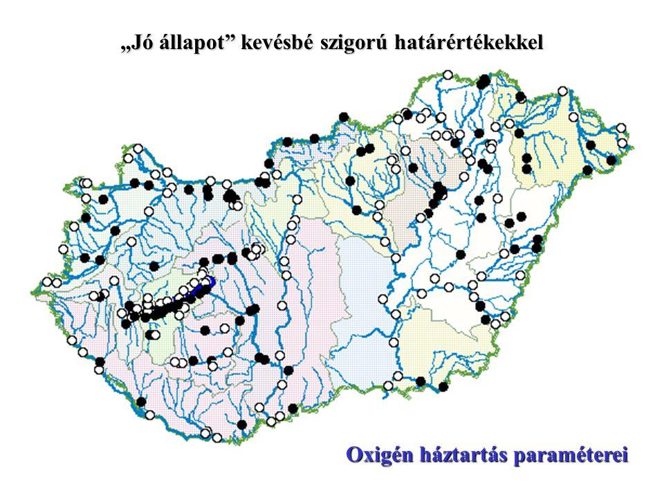 """""""Jó állapot"""" az MSZ 12749 határértékei szerint Oxigén háztartás paraméterei"""