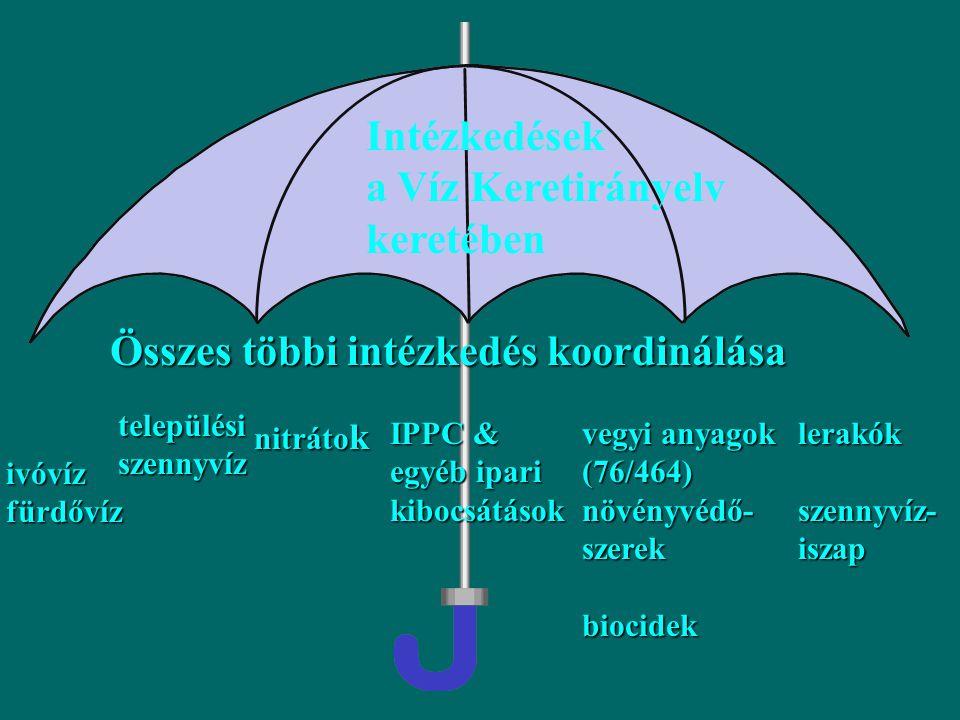 Vízminőségi normák: Felszíni vizek irányelv (75/440/EEC)Felszíni vizek irányelv (75/440/EEC) Halak életteréül szolgáló felszíni vizek (78/695/EEC)Halak életteréül szolgáló felszíni vizek (78/695/EEC) Rákok, kagylók életteréül szolgáló felszíni vizek (79/869/EEC)Rákok, kagylók életteréül szolgáló felszíni vizek (79/869/EEC) Talajvíz (80/68/EEC)Talajvíz (80/68/EEC) Szabadtéri fürdőzésre használt víz (76/160/EEC)Szabadtéri fürdőzésre használt víz (76/160/EEC) Ivóvíz (98/83/EEC)Ivóvíz (98/83/EEC) Kibocsátási határértékek: Városi szenyvíz (91/271/EEC)Városi szenyvíz (91/271/EEC) Veszélyes anyagok (76/464/EEC)Veszélyes anyagok (76/464/EEC) Nitrát direktíva (91/676/EEC)Nitrát direktíva (91/676/EEC) Növényvédő szerek (91/414/EEC)Növényvédő szerek (91/414/EEC) Egyéb jogszabályok és intézkedések Élőhelyek direktíva (92/43/EEC)Élőhelyek direktíva (92/43/EEC) Madarak direktíva (79/409/EEC)Madarak direktíva (79/409/EEC) Szennyvíziszap direktíva (86/278/EEC)Szennyvíziszap direktíva (86/278/EEC) Integrált szennyezés megelőzés (IPPC)Integrált szennyezés megelőzés (IPPC) Seveso (82/501/EEC)Seveso (82/501/EEC) Környezeti hatásvizsgálat (85/37/EEC)Környezeti hatásvizsgálat (85/37/EEC) Fontosabb, a vízminőséggel kapcsolatos korábbi direktívák