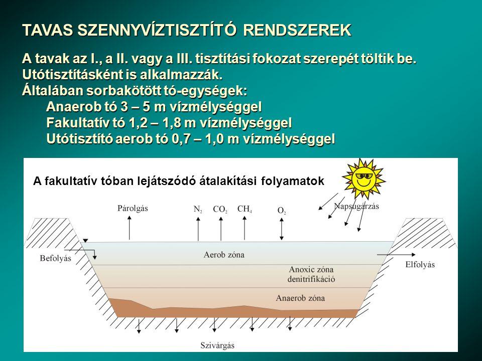 TAVAS SZENNYVÍZTISZTÍTÓ RENDSZEREK A tavak az I., a II. vagy a III. tisztítási fokozat szerepét töltik be. Utótisztításként is alkalmazzák. Általában