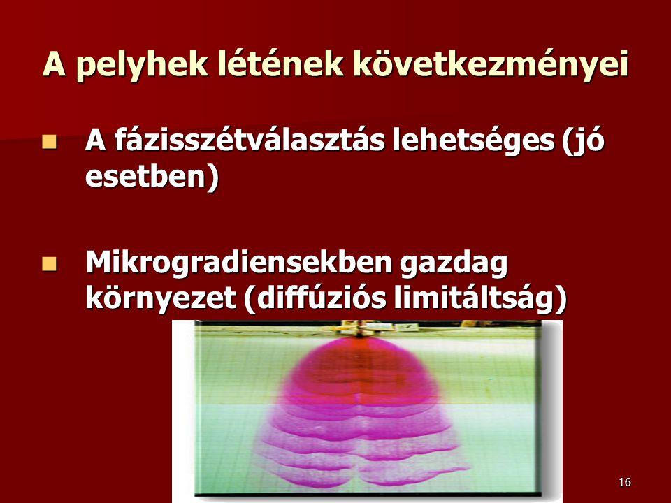 16 A pelyhek létének következményei A fázisszétválasztás lehetséges (jó esetben) A fázisszétválasztás lehetséges (jó esetben) Mikrogradiensekben gazda