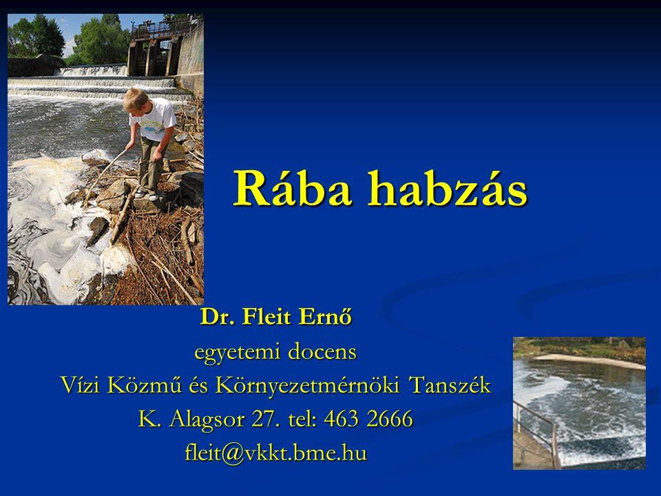 Rába habzás Dr. Fleit Ernő egyetemi docens Vízi Közmű és Környezetmérnöki Tanszék K. Alagsor 27. tel: 463 2666 fleit@vkkt.bme.hu