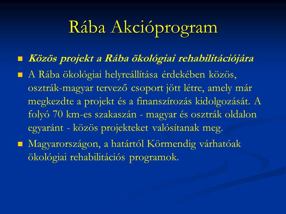 Rába Akcióprogram Közös projekt a Rába ökológiai rehabilitációjára A Rába ökológiai helyreállítása érdekében közös, osztrák-magyar tervező csoport jöt