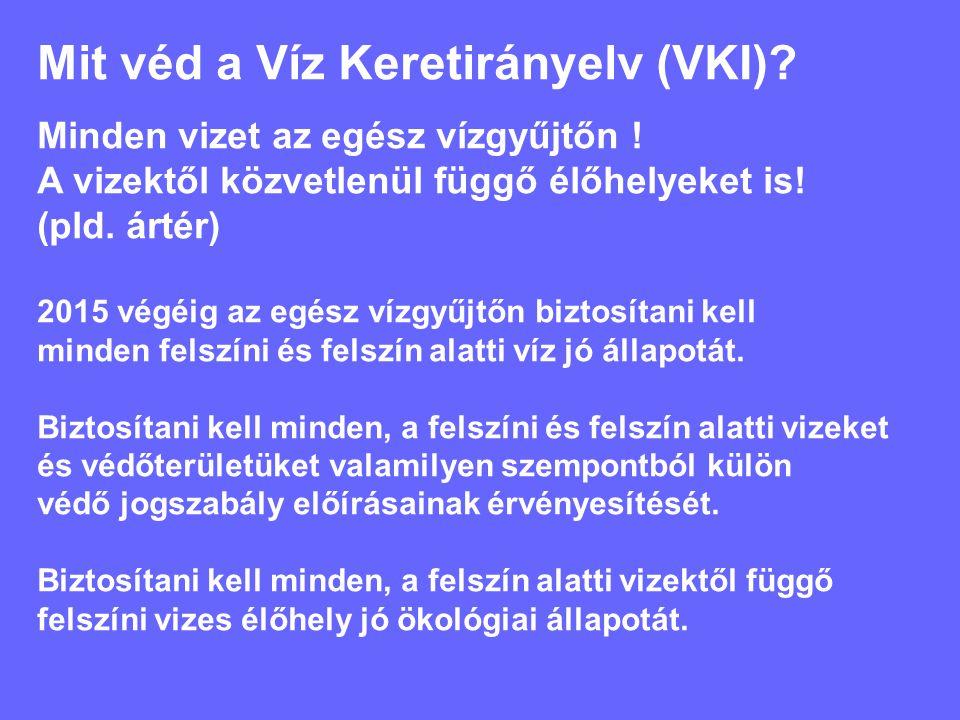 Mit jelent a jó állapot a VKI szerint a felszíni vizek esetén.