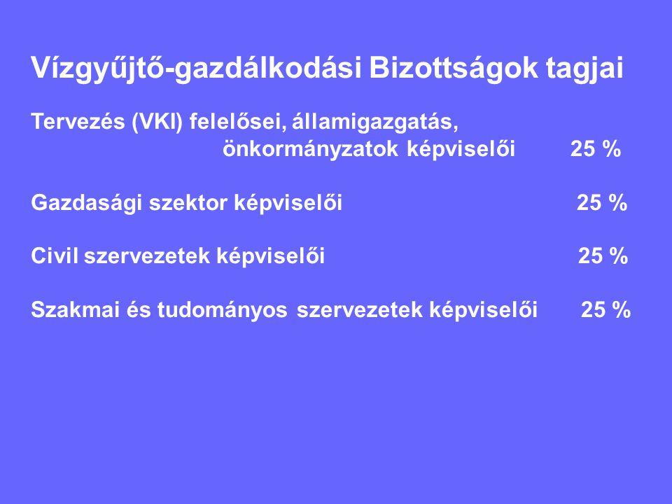 Vízgyűjtő-gazdálkodási Bizottságok tagjai Tervezés (VKI) felelősei, államigazgatás, önkormányzatok képviselői 25 % Gazdasági szektor képviselői 25 % Civil szervezetek képviselői 25 % Szakmai és tudományos szervezetek képviselői 25 %