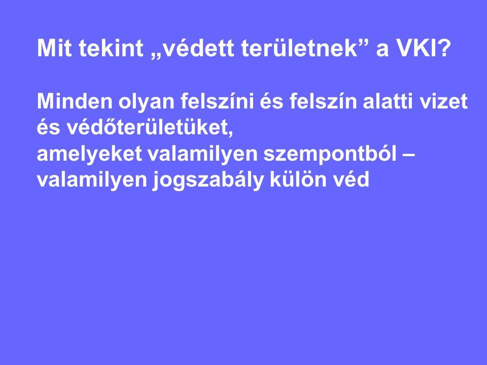 """Mit tekint """"védett területnek a VKI."""