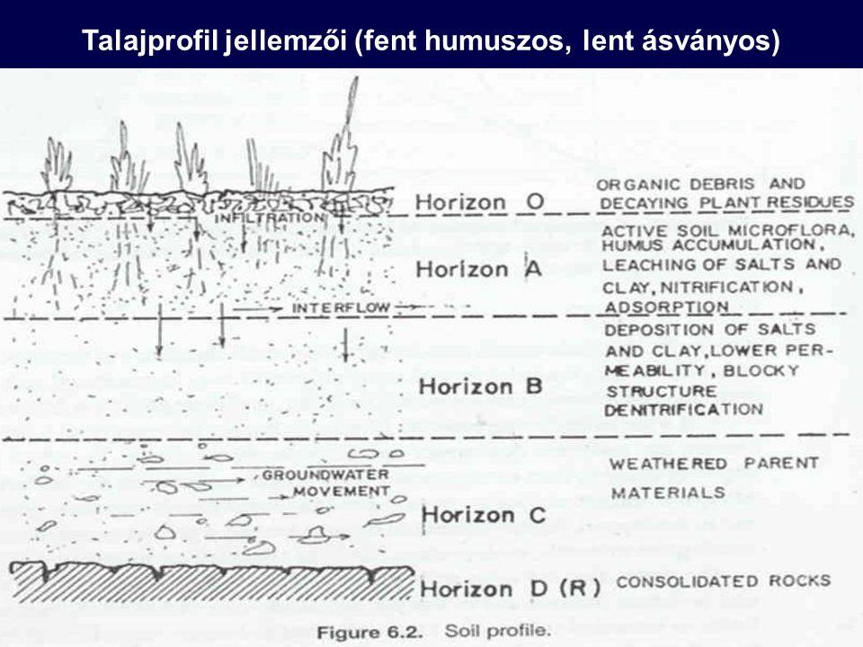 Talajdegradáció Minden olyan folyamat, amely a talaj termékenységét csökkenti, minőségét rontja, funkcióképességét korlátozza vagy a talaj teljes lepusztulásához vezet.