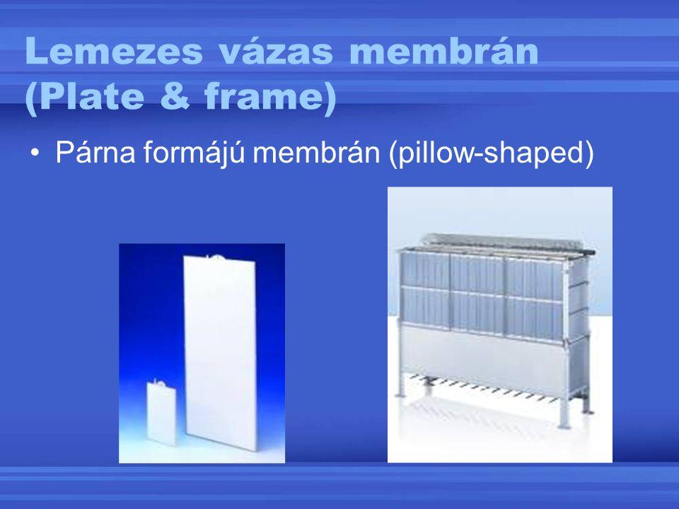 Lemezes vázas membrán (Plate & frame) Párna formájú membrán (pillow-shaped)