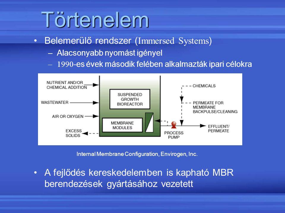 Törtenelem Belemerülő rendszer ( Immersed Systems ) –Alacsonyabb nyomást igényel –1990 -es évek második felében alkalmazták ipari célokra A fejlődés k
