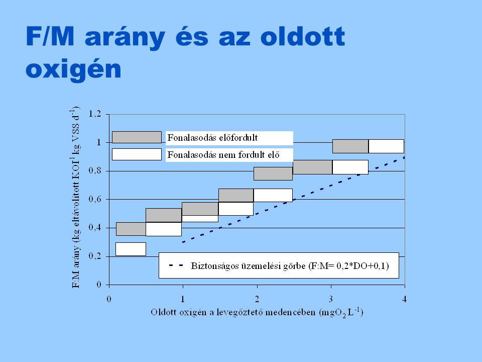 F/M arány és az oldott oxigén