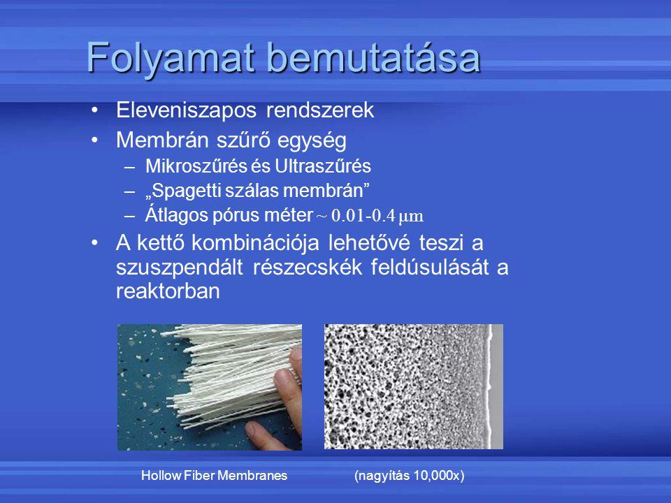 """Folyamat bemutatása Eleveniszapos rendszerek Membrán szűrő egység –Mikroszűrés és Ultraszűrés –""""Spagetti szálas membrán"""" –Átlagos pórus méter ~ 0.01-0"""