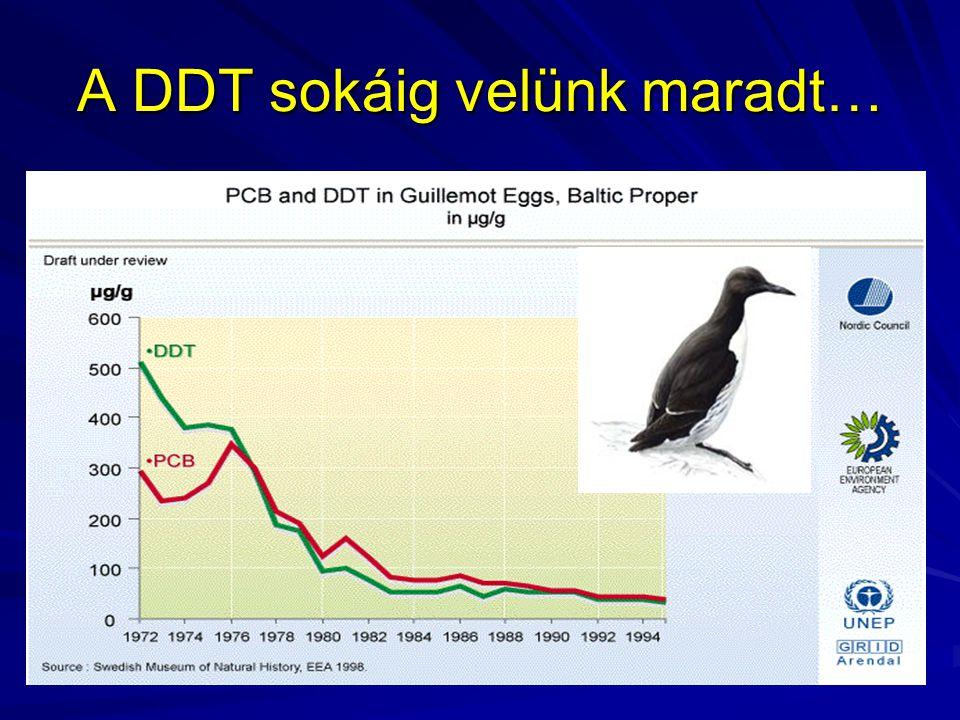 A DDT sokáig velünk maradt…
