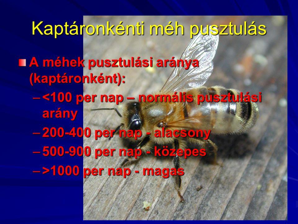 Kaptáronkénti méh pusztulás A méhek pusztulási aránya (kaptáronként): –<100 per nap – normális pusztulási arány –200-400 per nap - alacsony –500-900 p