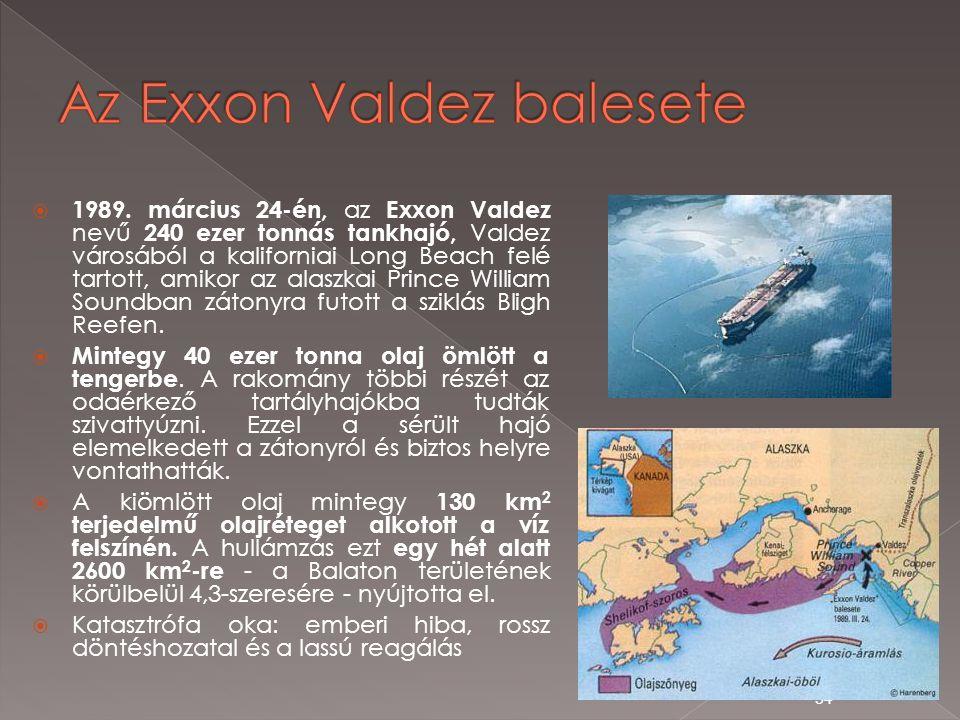  1989. március 24-én, az Exxon Valdez nevű 240 ezer tonnás tankhajó, Valdez városából a kaliforniai Long Beach felé tartott, amikor az alaszkai Princ