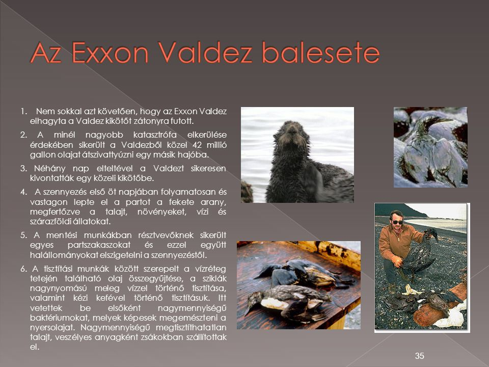 1. Nem sokkal azt követően, hogy az Exxon Valdez elhagyta a Valdez kikötőt zátonyra futott. 2. A minél nagyobb katasztrófa elkerülése érdekében sikerü