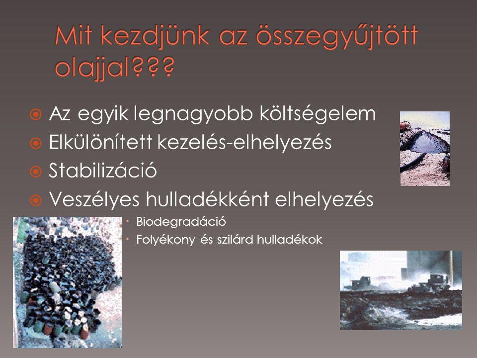  Az egyik legnagyobb költségelem  Elkülönített kezelés-elhelyezés  Stabilizáció  Veszélyes hulladékként elhelyezés  Biodegradáció  Folyékony és