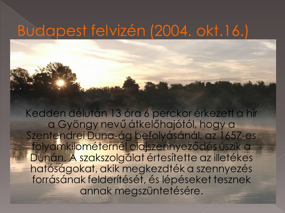 Kedden délután 13 óra 6 perckor érkezett a hír a Gyöngy nevű átkelőhajótól, hogy a Szentendrei Duna-ág befolyásánál, az 1657-es folyamkilométernél ola