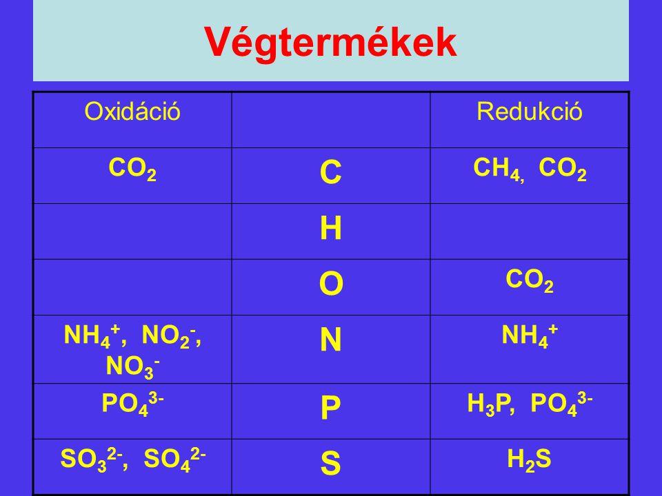 Végtermékek OxidációRedukció CO 2 C CH 4, CO 2 H O CO 2 NH 4 +, NO 2 -, NO 3 - N NH 4 + PO 4 3- P H 3 P, PO 4 3- SO 3 2-, SO 4 2- S H2SH2S