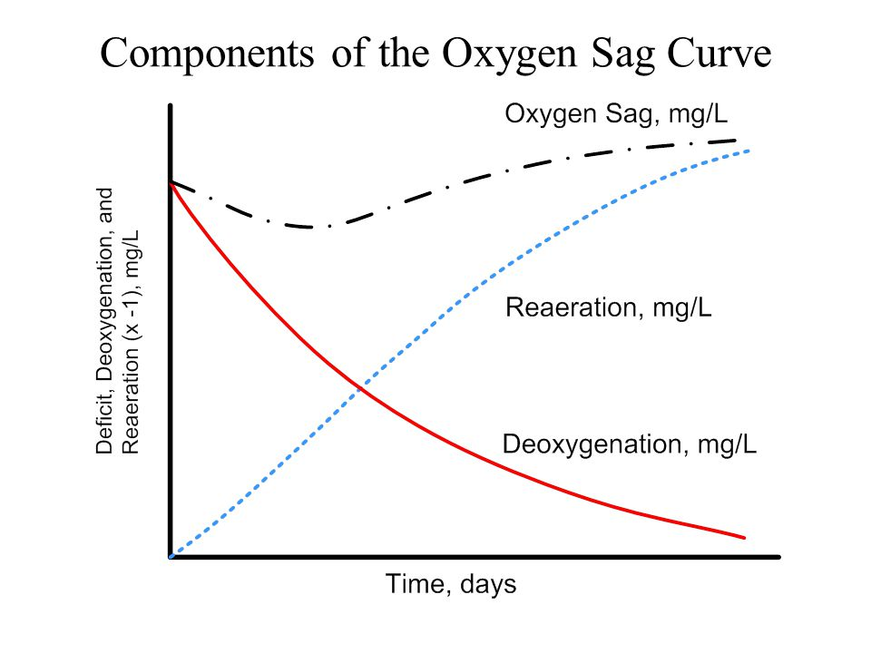 Components of the Oxygen Sag Curve