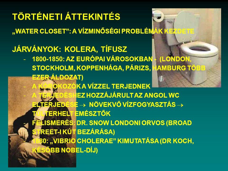 ÖSSZES (SZERVETLEN) NITROGÉN JELENLEGI ÁLLAPOT I.-II.o. III.o. IV.-V.o.
