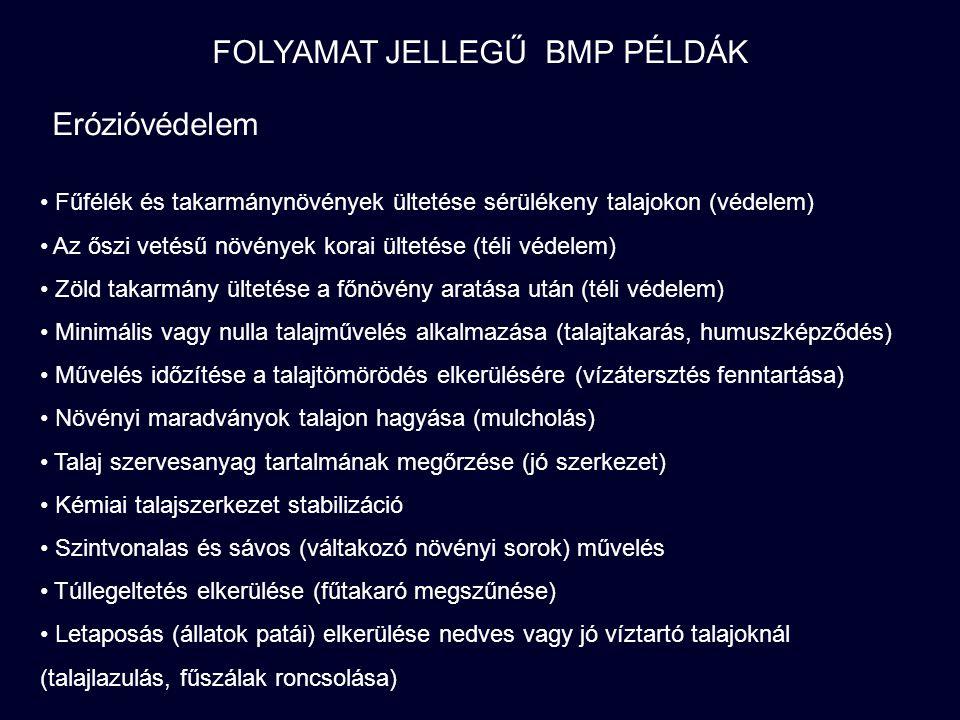 MEGGYŐZÉS… Jogszabályi környezet (teljes vagy részleges tiltás, kényszer) - hatékony.