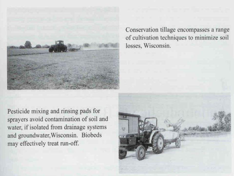 SZERKEZETI BMP PÉLDÁK Az intenzív mezőgazdasági, települési, ipari területek távol tartása a vizektől (folyóparti puffer zónák) Permetezett peszticidek mozgásának megakadályozása (erdősáv) Lebegtetett anyagok és a hozzájuk kapcsolódó elmozdult szennyezők kiszűrése a befogadók elérése előtt Épített szerkezetek az alábbi általános funkciókkal: A talajfelszín stabilizációja a szennyezők elmozdulási kockázatának csökkentése érdekében (talajban még nem, a vizekben már szennyezők) A csapadékvíz talajba szivárgásának elősegítése a felszín eléréséhez minél közelebb (a felszínről lemosódó szennyezések kockázatának mérséklése) Csapadékvíz rövid idejű (1-2 nap) visszatartása a lebegtetett anyagok és a hozzájuk kapcsolódó elmozdult szennyezők kiülepítése érdekében Csapadékvíz hosszabb idejű (2-3 hét) visszatartása a szerves anyagok biológiai lebontása és a tápanyagok növényi felvétele érdekében Talajvédelmi eljárások vízerózió ellen
