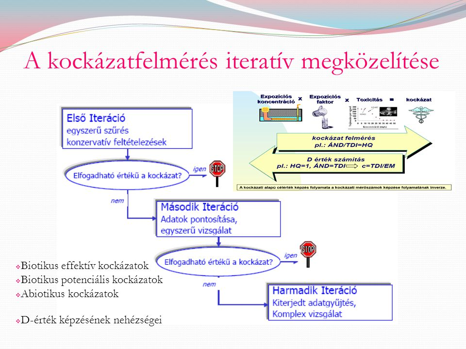 A kockázatfelmérés iteratív megközelítése  Biotikus effektív kockázatok  Biotikus potenciális kockázatok  Abiotikus kockázatok  D-érték képzésének