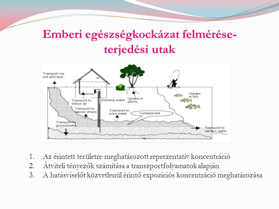 Emberi egészségkockázat felmérése- terjedési utak 1.Az érintett területre meghatározott reprezentatív koncentráció 2.Átviteli tényezők számítása a tra