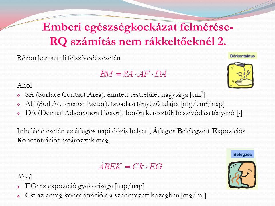 Emberi egészségkockázat felmérése- RQ számítás nem rákkeltőeknél 2. Bőrön keresztüli felszívódás esetén Ahol  SA (Surface Contact Area): érintett tes