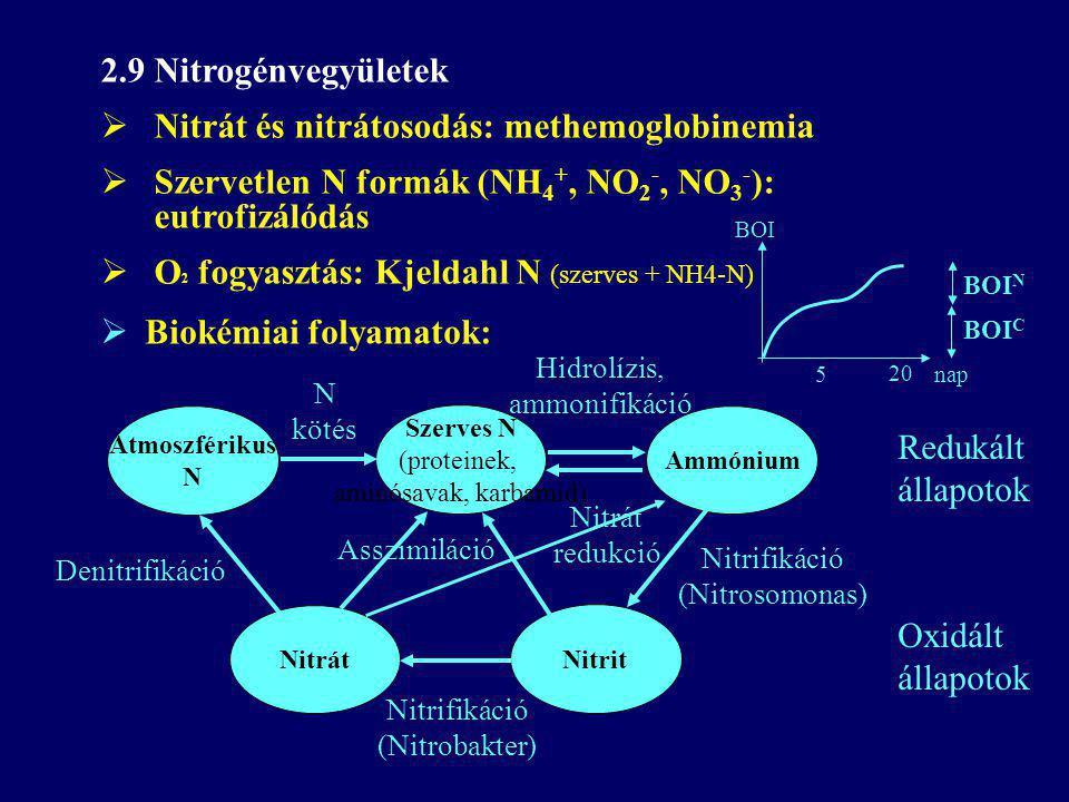 2.9 Nitrogénvegyületek  Nitrát és nitrátosodás: methemoglobinemia  Szervetlen N formák (NH 4 +, NO 2 -, NO 3 - ): eutrofizálódás  O 2 fogyasztás: Kjeldahl N (szerves + NH4-N) Atmoszférikus N Szerves N (proteinek, aminósavak, karbamid) Ammónium N kötés Hidrolízis, ammonifikáció Nitrit Nitrát Nitrifikáció (Nitrobakter) Denitrifikáció Nitrifikáció (Nitrosomonas) Nitrát redukció Asszimiláció Oxidált állapotok Redukált állapotok 5 20 nap BOI BOI C BOI N  Biokémiai folyamatok: