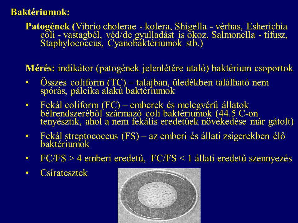 Baktériumok: Patogének (Vibrio cholerae - kolera, Shigella - vérhas, Esherichia coli - vastagbél, véd/de gyulladást is okoz, Salmonella - tífusz, Staphylococcus, Cyanobaktériumok stb.) Mérés: indikátor (patogének jelenlétére utaló) baktérium csoportok Összes coliform (TC) – talajban, üledékben található nem spórás, pálcika alakú baktériumok Fekál coliform (FC) – emberek és melegvérű állatok bélrendszeréből származó coli baktériumok (44.5 C-on tenyésztik, ahol a nem fekális eredetűek növekedése már gátolt) Fekál streptococcus (FS) – az emberi és állati zsigerekben élő baktériumok FC/FS > 4 emberi eredetű, FC/FS < 1 állati eredetű szennyezés Csíratesztek