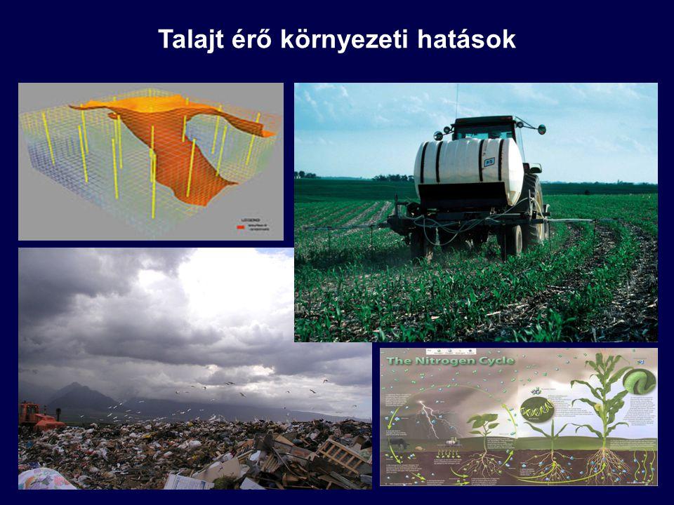 Veszélyes szennyezőanyag lerakók (egyedi szennyezések, azonosítható szennyezők): vegyszertárolók, működő és felhagyott ipari és vegyi üzemek, korábbi katonai bázisok, szennyezett üledékek Nagyterületű talajszennyezések (hosszú idejű szennyezések): korábbi vagy működő nagy kiterjedésű ipari parkok, közlekedési területek Kisebb szennyezett talajterek (egyedi források, a kibocsátás helyétől távolodva csökkenő hatás): autópályák, autóutak környezete, felszín alatti tárolók, hulladéklerakók Mezőgazdasági művelésű talajok: talajok telítődése foszfáttal, nitrátkimosódás, peszticidek akkumulációja, szerves kemikáliák kimosódása Egyes szennyezők évszázadok óta akkumulálódnak (pl.