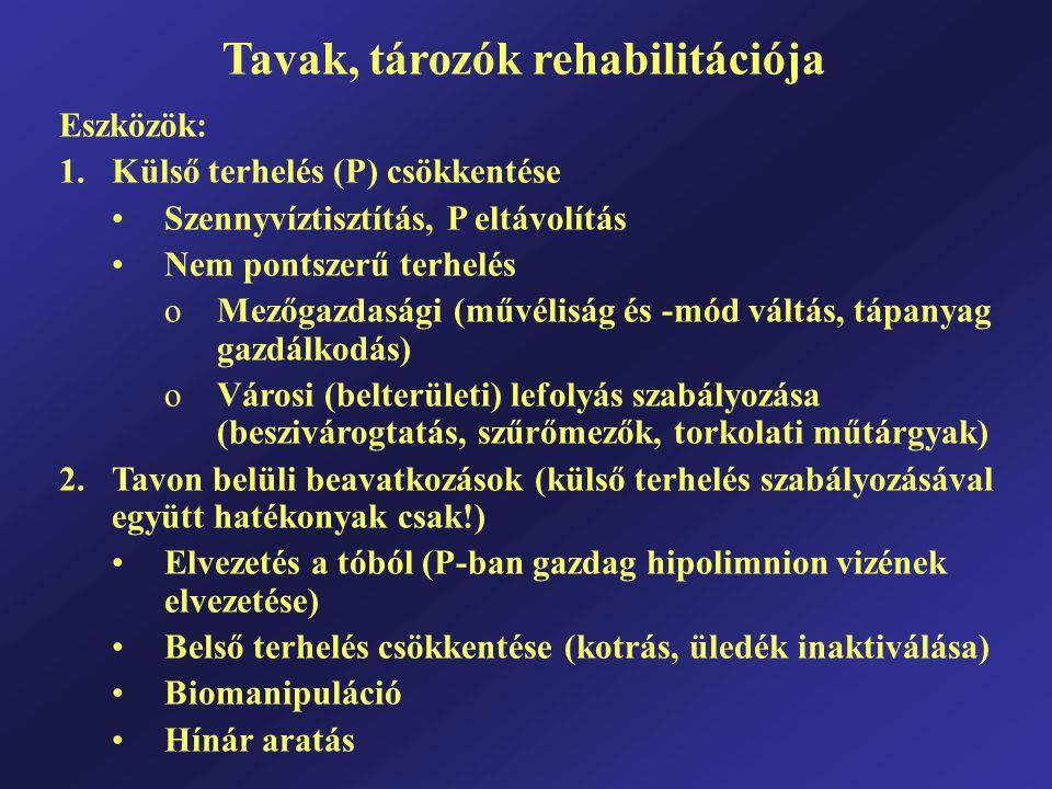 Tavak, tározók rehabilitációja Eszközök: 1.Külső terhelés (P) csökkentése Szennyvíztisztítás, P eltávolítás Nem pontszerű terhelés oMezőgazdasági (műv