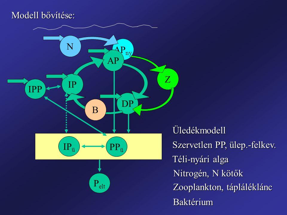 AP ny IP AP DP Üledékmodell PP ü IP ü IPP N Z B Szervetlen PP, ülep.-felkev. Téli-nyári alga Nitrogén, N kötők Zooplankton, tápláléklánc Baktérium Mod