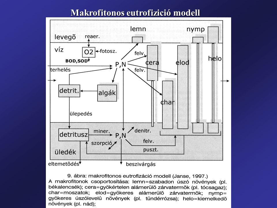 Makrofitonos eutrofizició modell