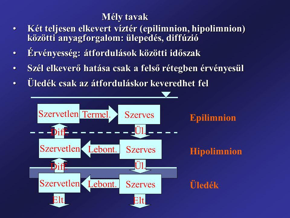 Mély tavak Két teljesen elkevert víztér (epilimnion, hipolimnion) közötti anyagforgalom: ülepedés, diffúzióKét teljesen elkevert víztér (epilimnion, h