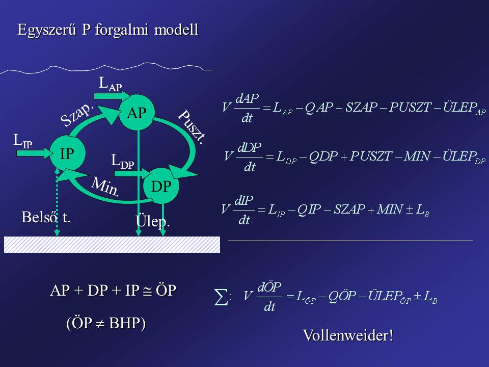 Egyszerű P forgalmi modell IP AP DP Szap. Puszt. Min. L IP L AP L DP Ülep. Belső t. AP + DP + IP  ÖP (ÖP  BHP) Vollenweider!