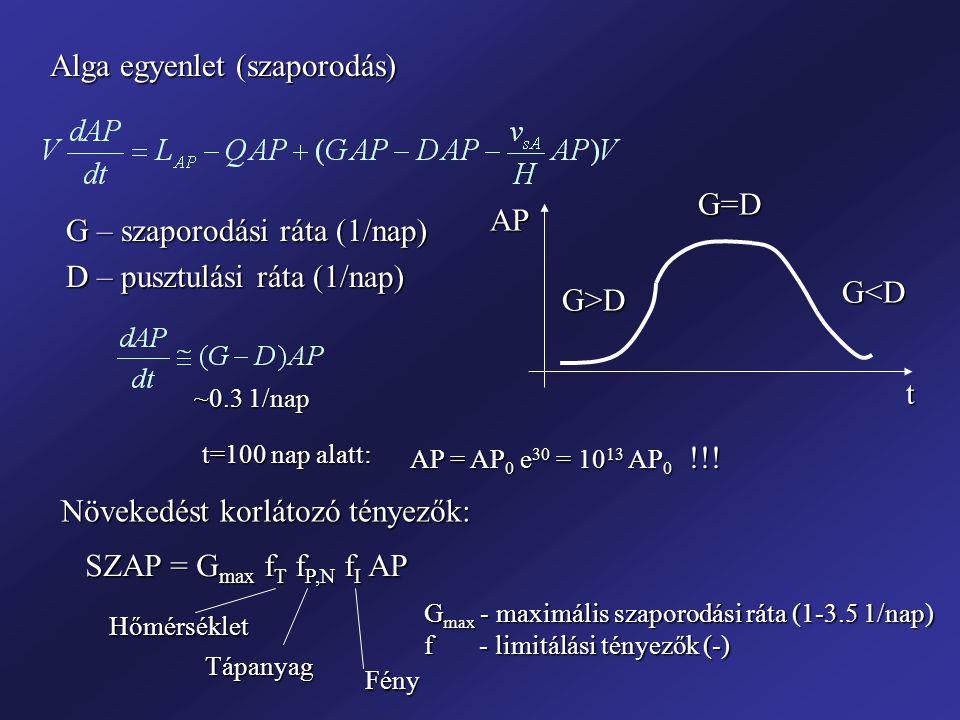 Alga egyenlet (szaporodás) G – szaporodási ráta (1/nap) D – pusztulási ráta (1/nap) tAPG>D G=D G<D ~0.3 1/nap AP = AP 0 e 30 = 10 13 AP 0 !!! t=100 na